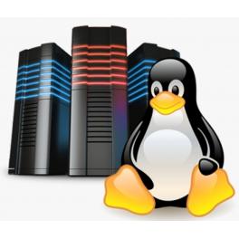 Linux Standart Paket