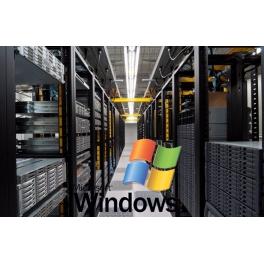 Windows Standart Hosting Paket