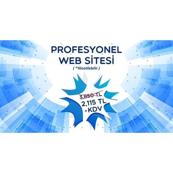 Profesyonel Web Sitesi (Yönetilebilir)